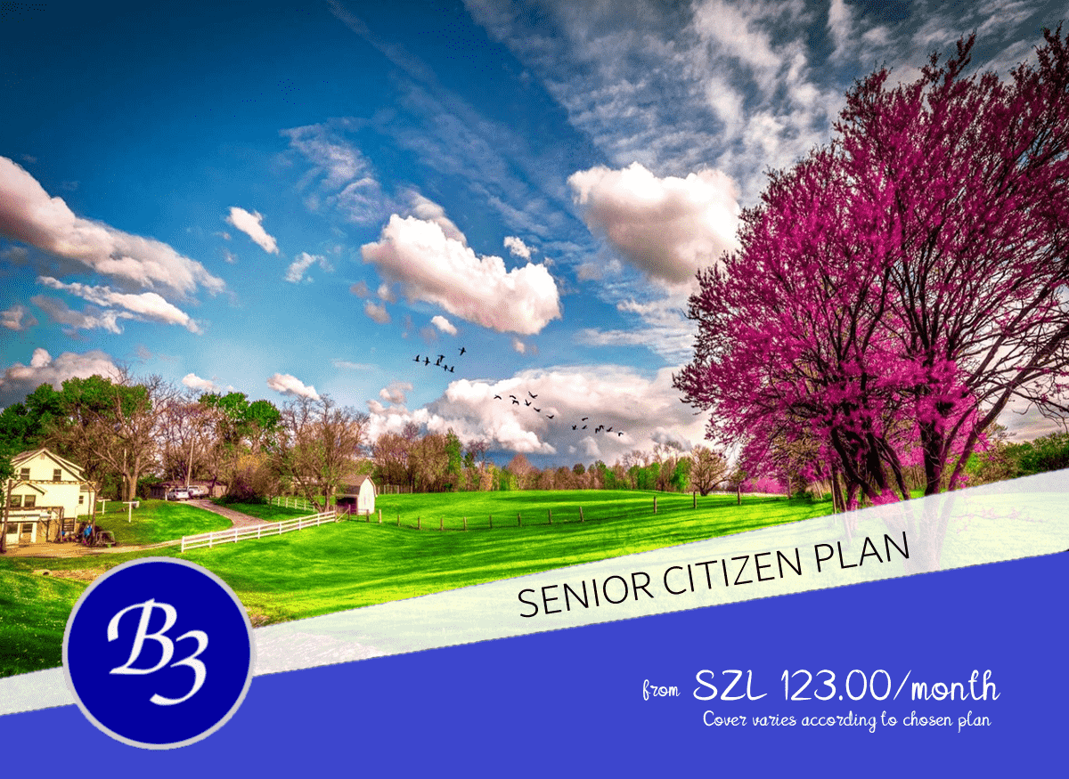 b3 Senior Citizen Plan